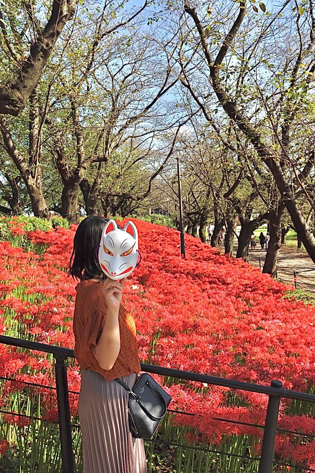 【秋の到来】300万本の美しい彼岸花の絨毯_3