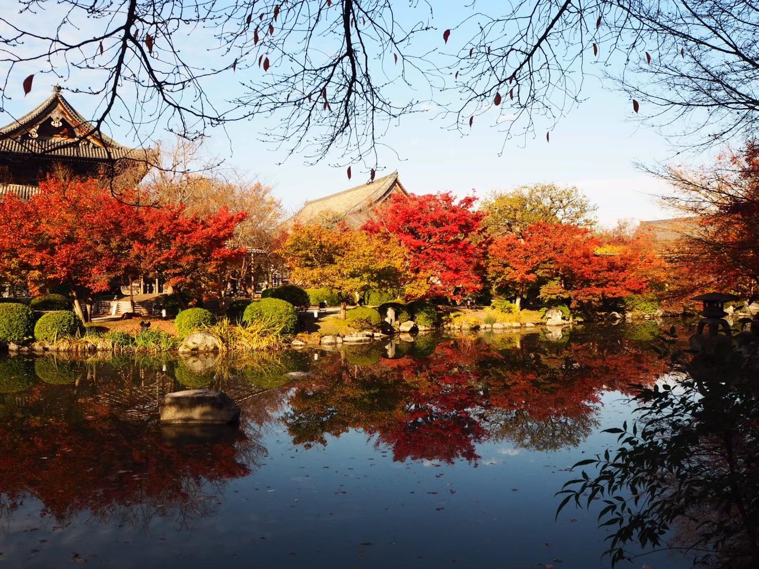 【女子旅におすすめ】京都で体験して最高だったベストメモリーまとめ♡_15