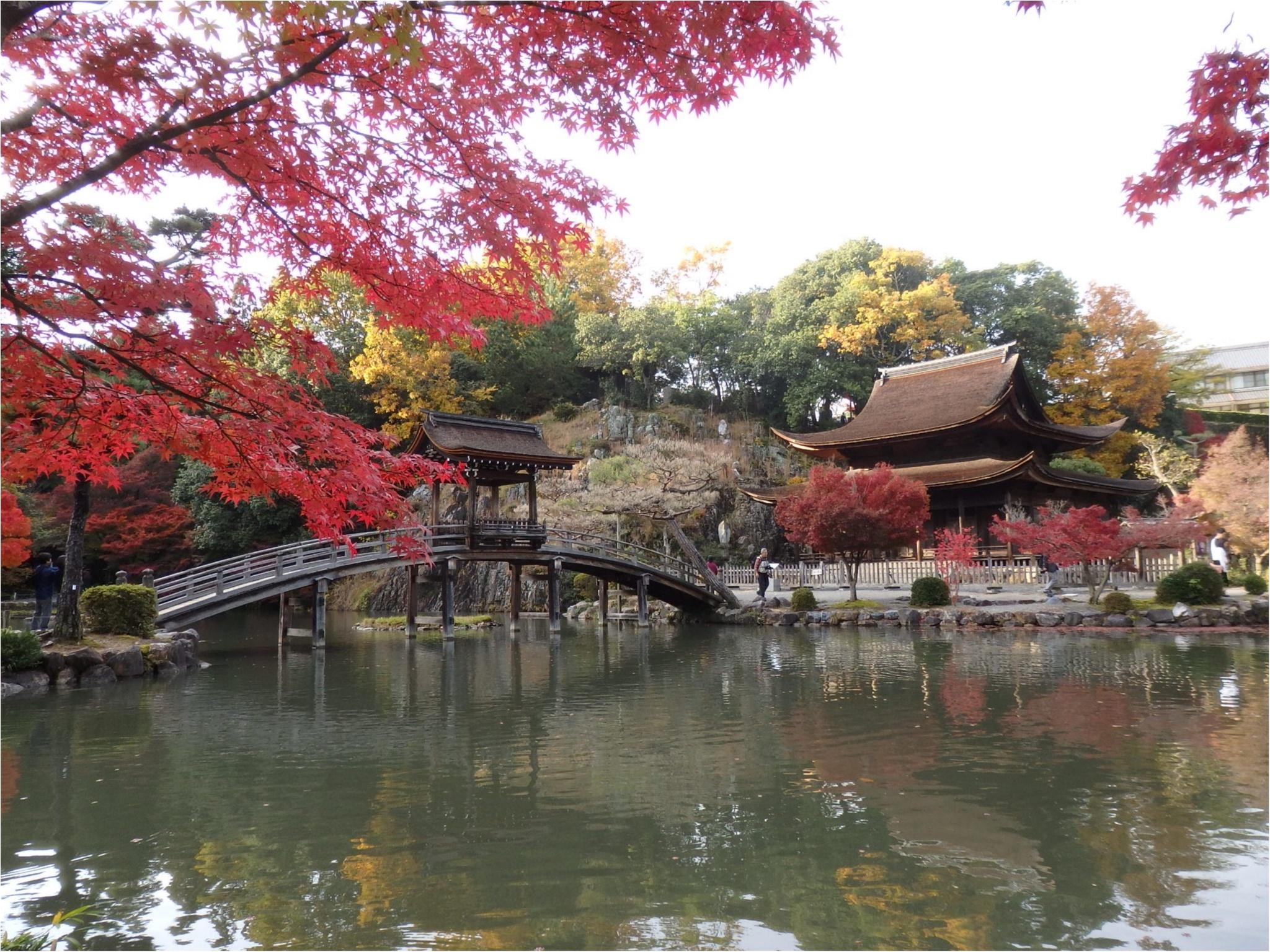【イケメン地蔵】話題の岐阜で秋を満喫♪_9