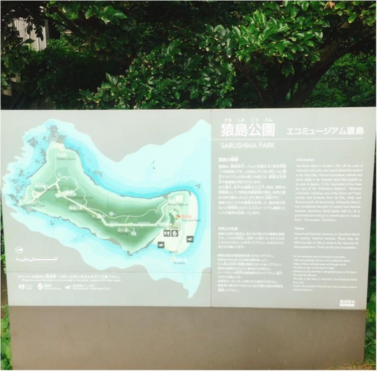無人島【猿島】で日帰りBBQ♪♪フォトジェニックを楽しむ1日おすすめプラン☆_10