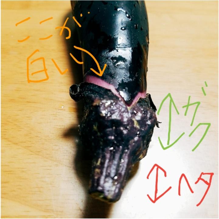 トマト、ナス、オクラ……夏野菜のおいしい見分け方、知ってますか!? 【#モアチャレ 農業女子】_3