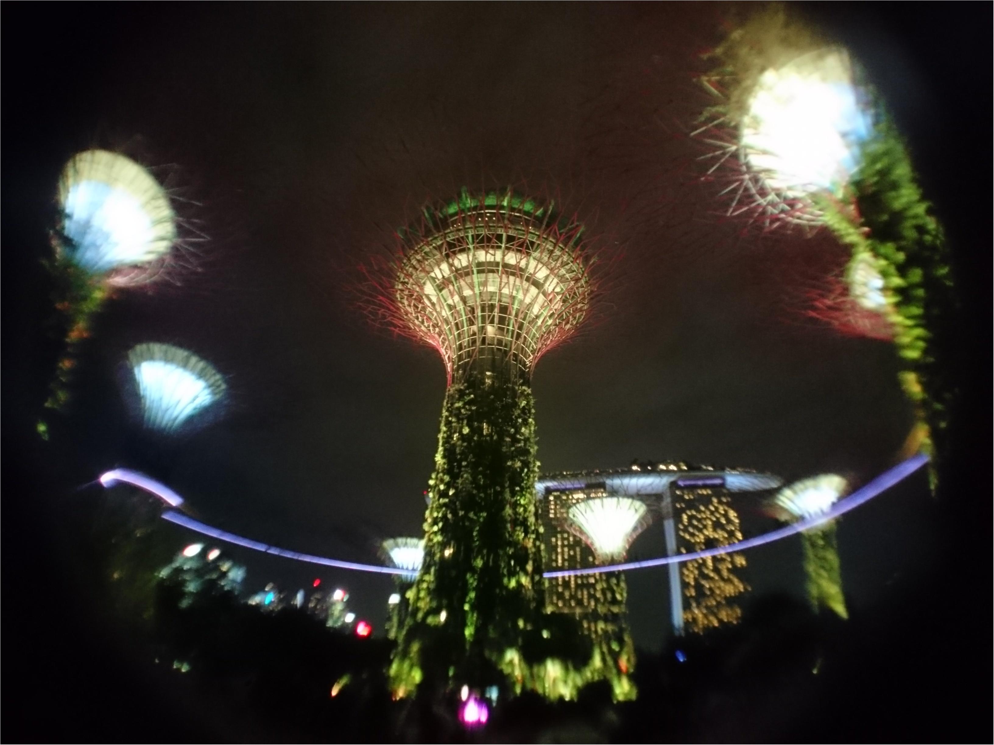 シンガポール女子旅特集 - 人気のマリーナベイ・サンズなどインスタ映えスポット、おいしいグルメがいっぱい♪_46