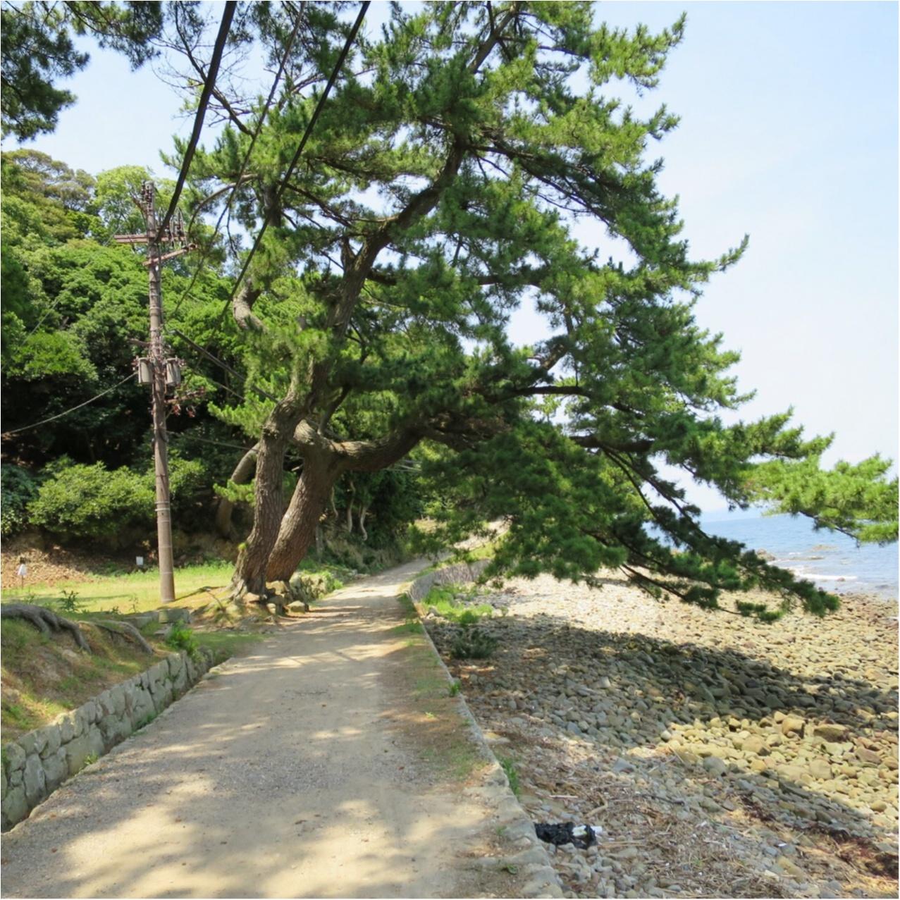 まるでラピュタの世界♡ 和歌山にある《友ヶ島》へGo♡_4