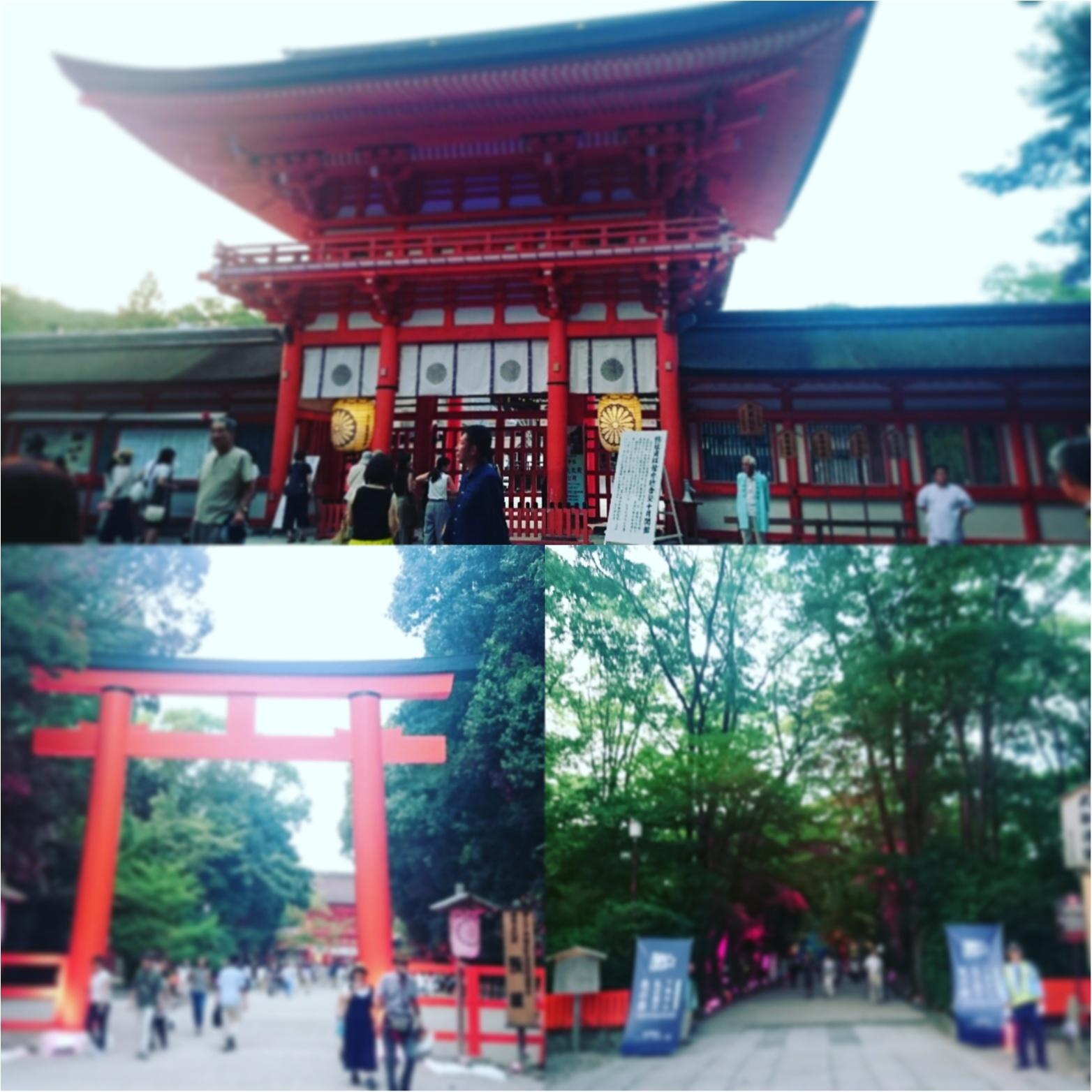 8/31まで‼ teamLabによる光の祭 in Kyoto_2