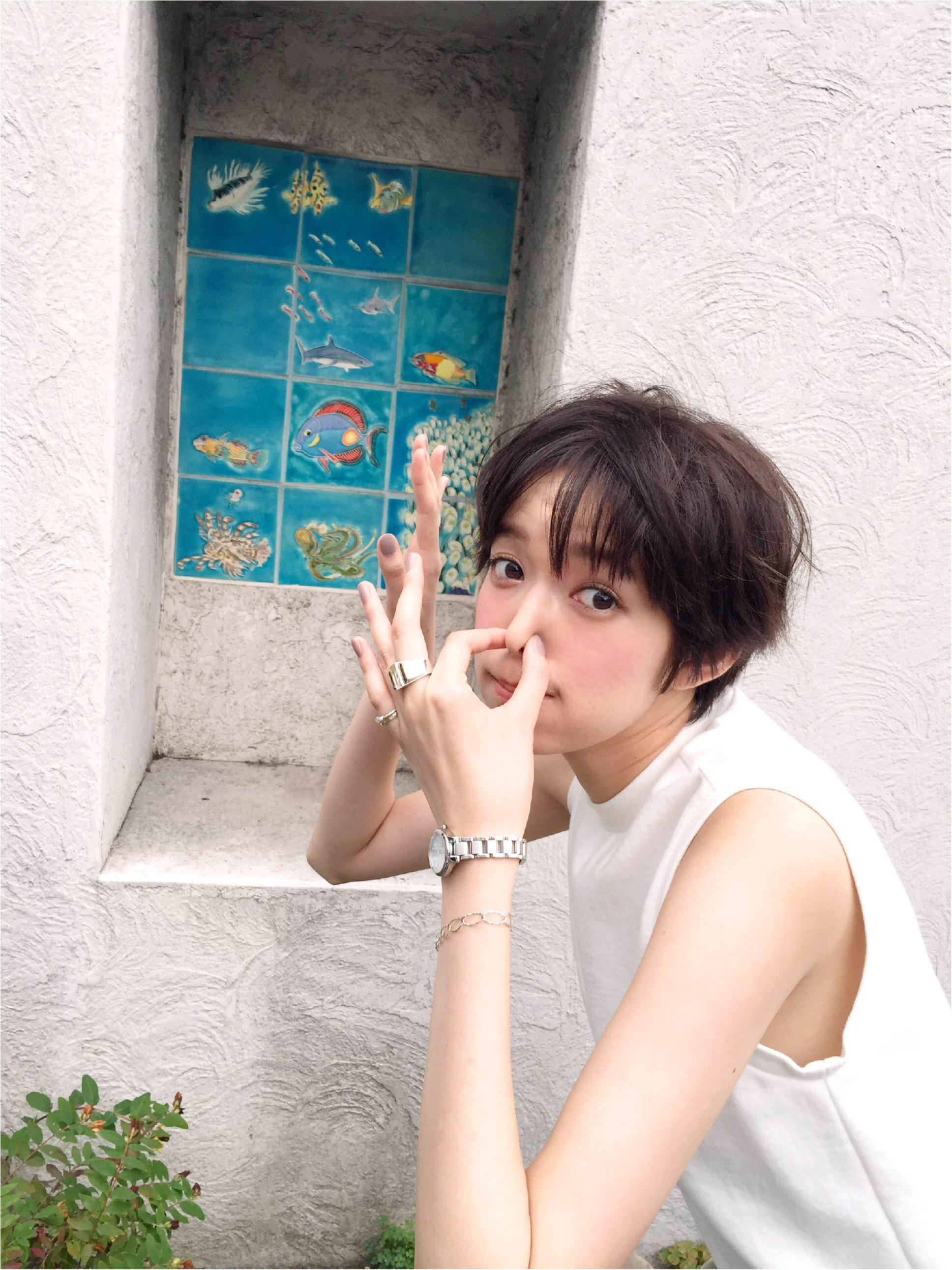 【テレビ出演情報】24時間テレビに佐藤栞里ちゃんが出演!_1