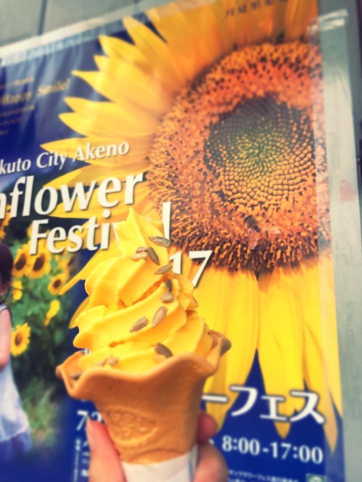 【HISバスツアー】60万本の奇跡!明野ひまわり畑と「清里テラス」&収穫体験ツアー_4