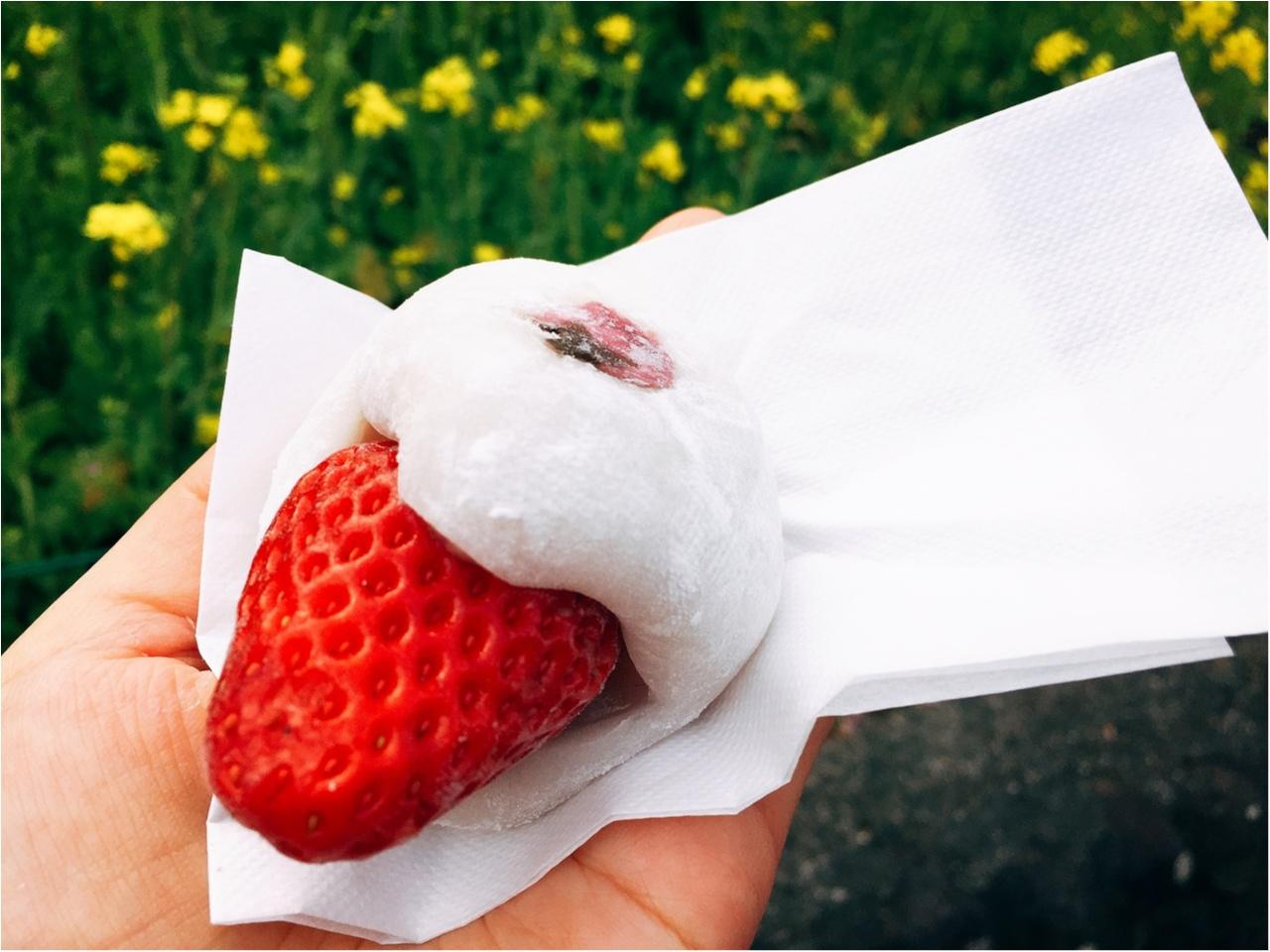 春の訪れを感じに…『河津桜まつり』へ行ってきました♡*_6