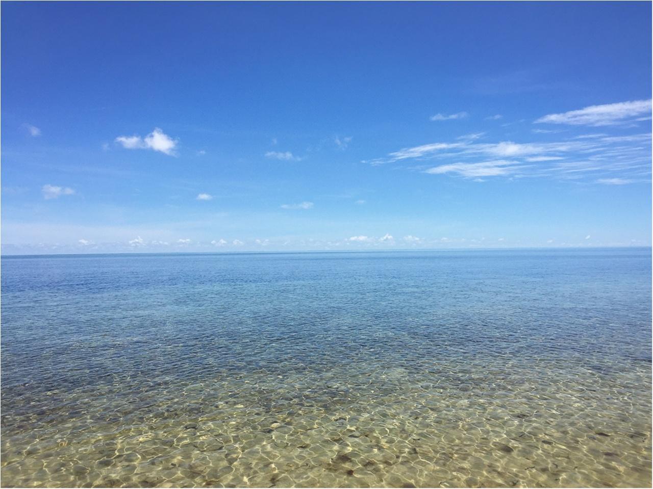 海も森林も大自然をまるっと満喫するなら《オーストラリア・ケアンズ》へ!_2