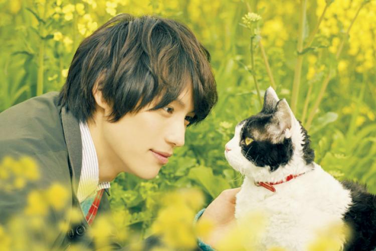 【オススメ☆CINEMA】『旅猫リポート』