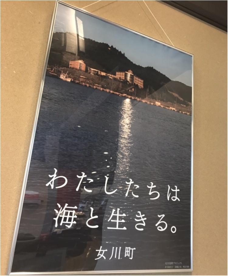 「ツール・ド・東北」まで10日をきりました! いまこそ知ってほしい(食べてほしい?)女川の名産品とは!?【#モアチャレ ほなみ】_17
