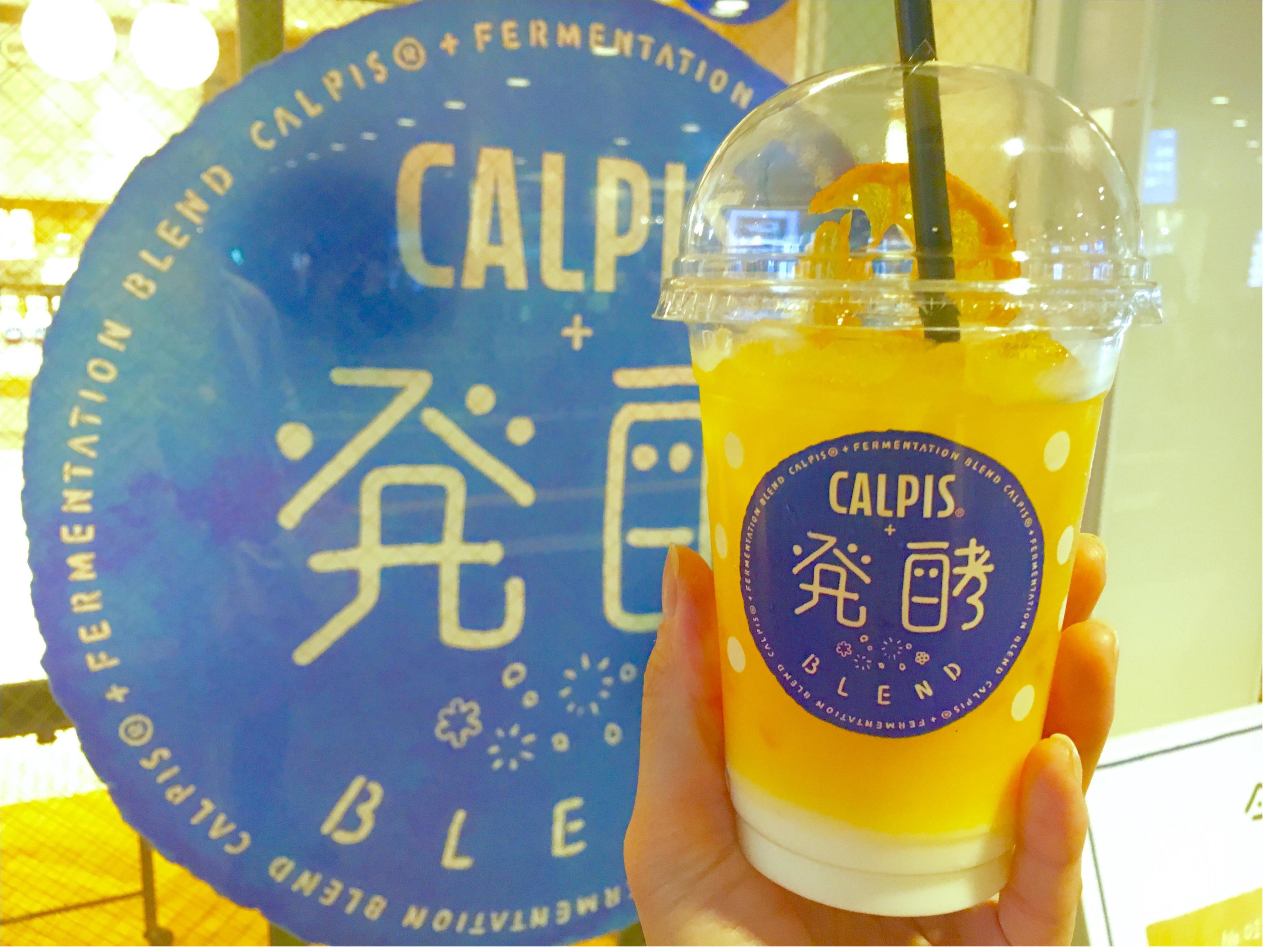 【今しか飲めない ‼︎ @ CAFE】フォトジェニックな《カルピス×発酵》ドリンクが大人気なんです❤️_4