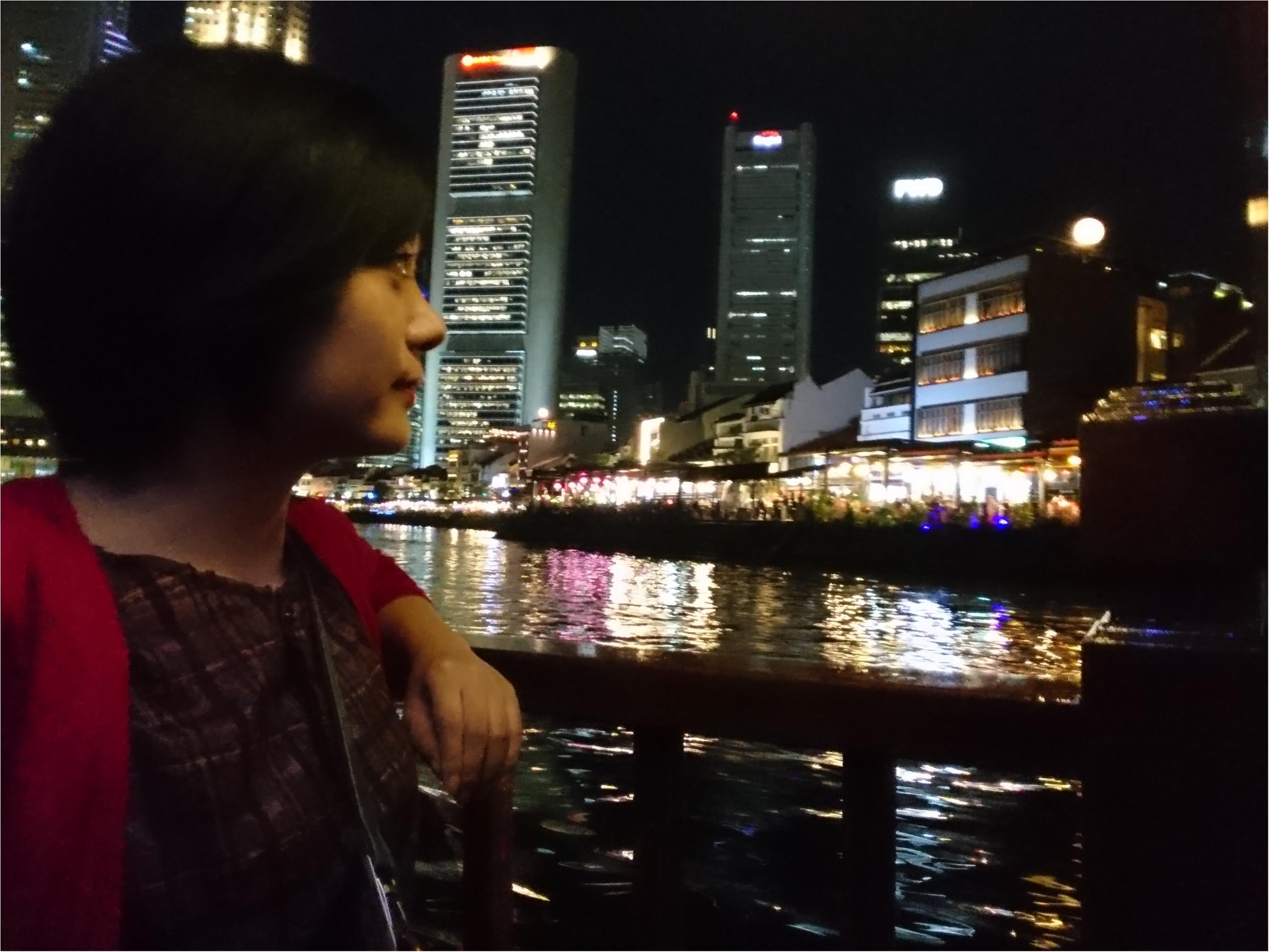 シンガポール女子旅特集 - 人気のマリーナベイ・サンズなどインスタ映えスポット、おいしいグルメがいっぱい♪_45