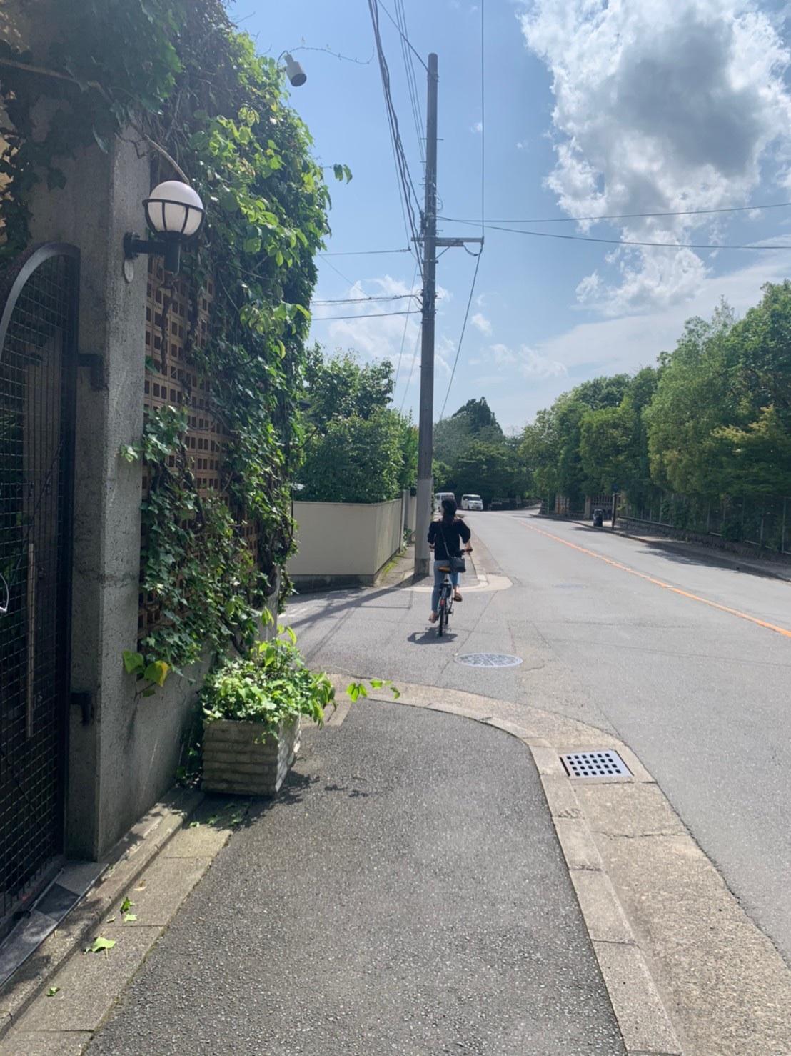 【京都旅第一弾】北野天満宮・龍安寺①_6