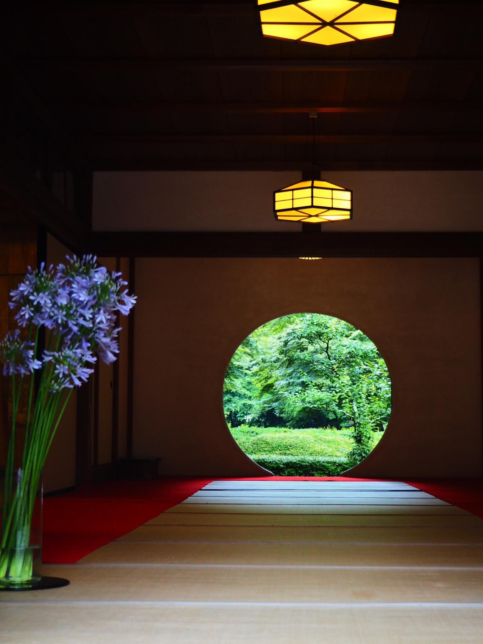 夏着物で鎌倉女子旅♡  紫陽花がとっても綺麗でした♡_8