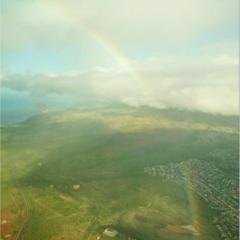 ハワイにきました!!★最新から穴場まで見どころたっぷりご紹介します〜HAWAII旅vol.1〜