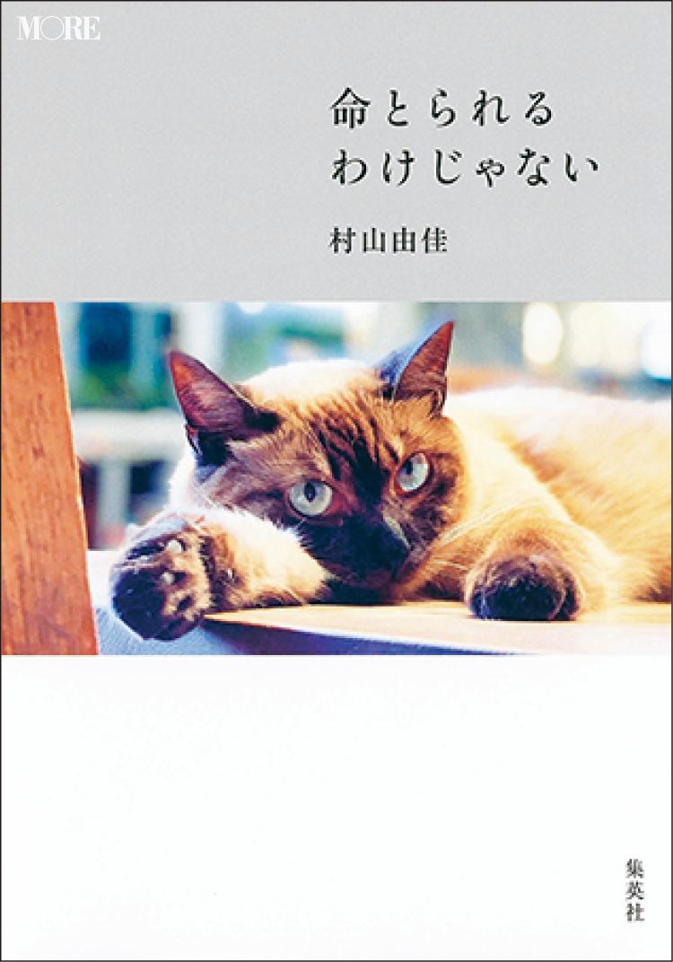 おすすめ本。『命とられるわけじゃない』村山由佳