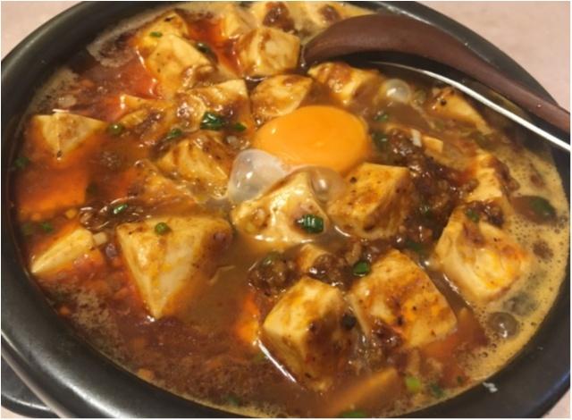 【また食べたい】佐藤ありさちゃんも食べていた美味しすぎる麻婆麺。_5