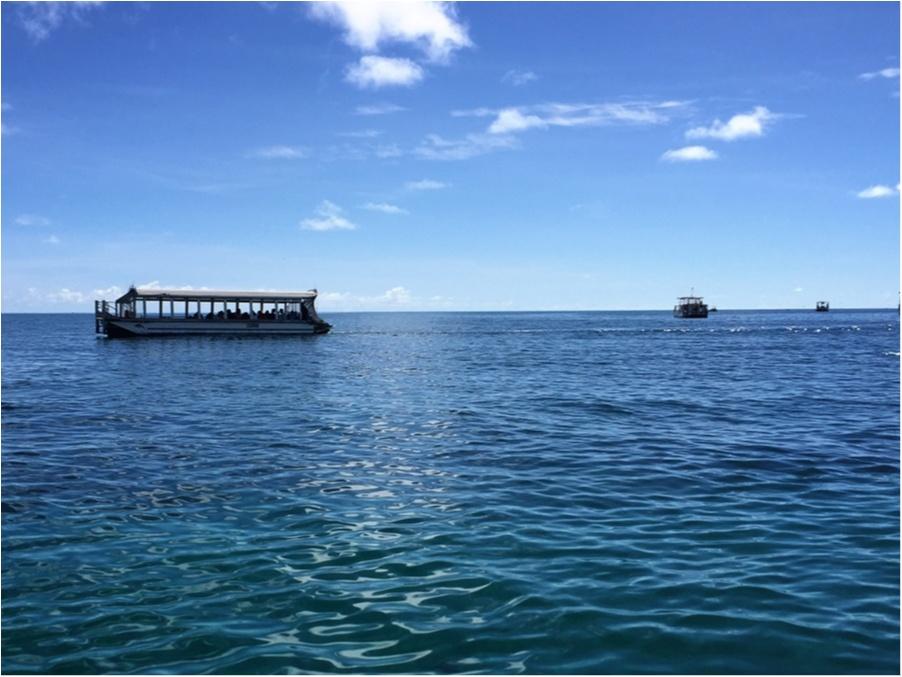 海も森林も大自然をまるっと満喫するなら《オーストラリア・ケアンズ》へ!_3