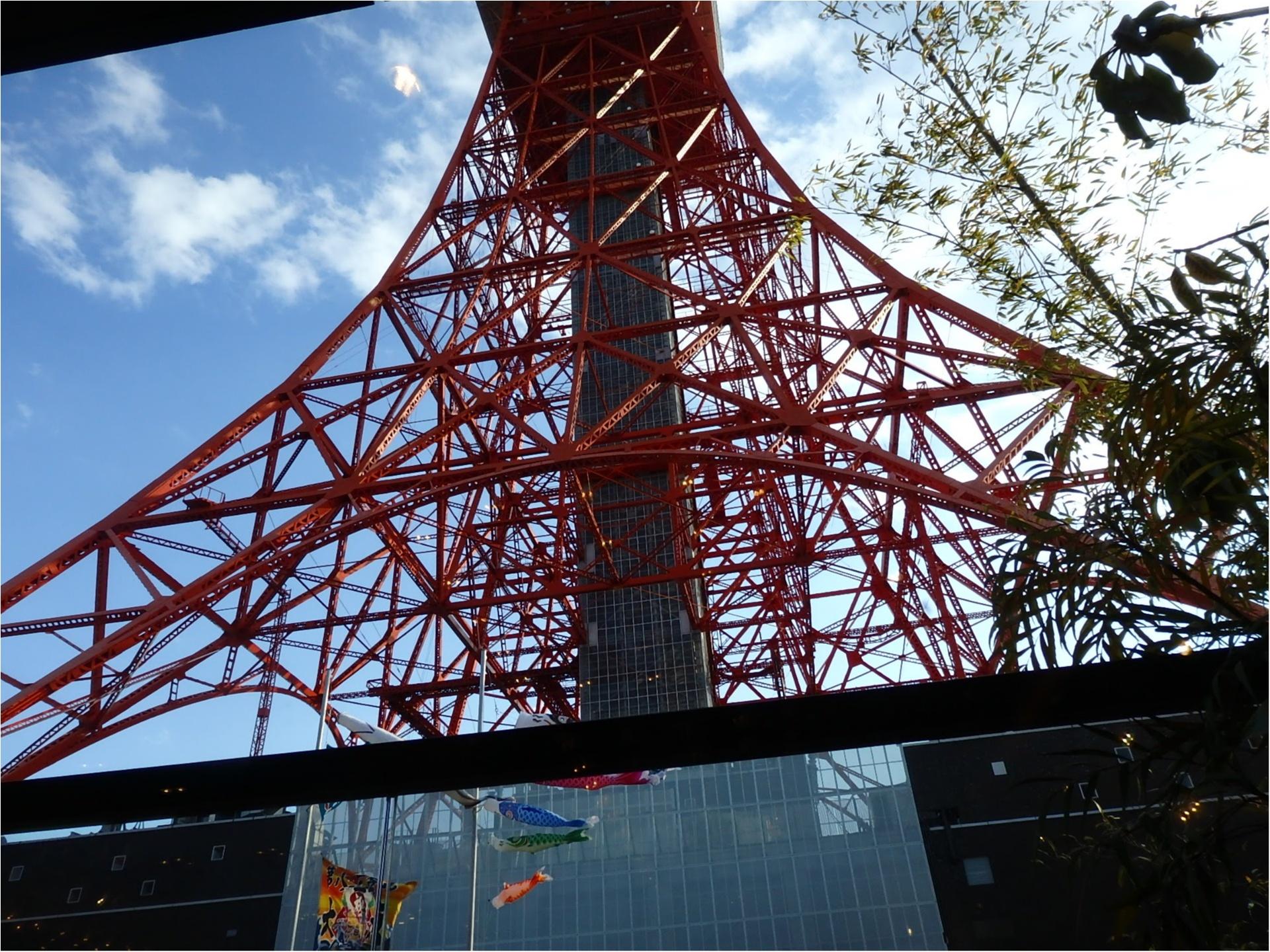 ☆世界でここだけ!結婚式with東京タワー☆_21