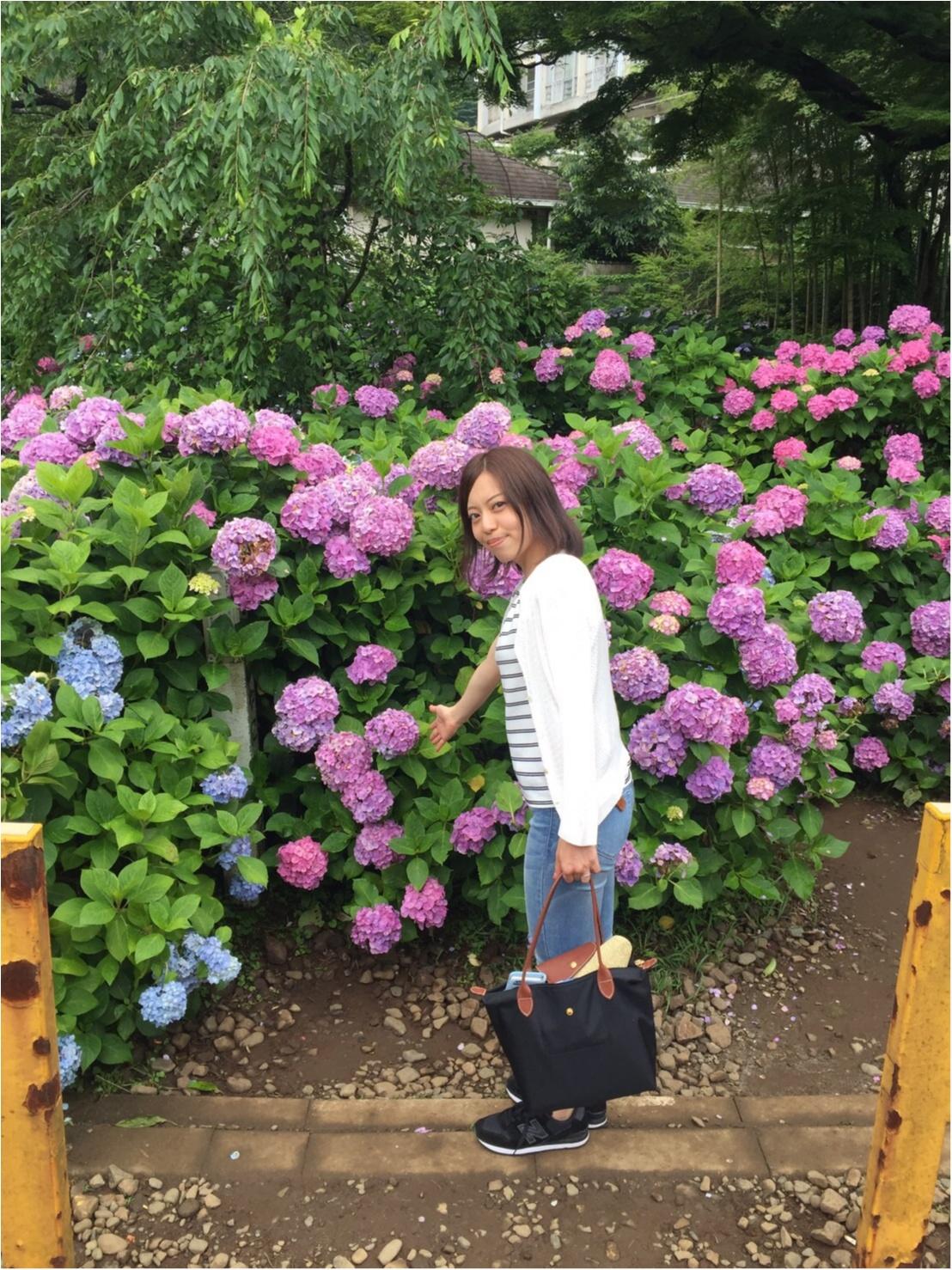 箱根女子旅特集《2019年版》- おすすめグルメ、人気の星野リゾート、パワースポットまで!_36