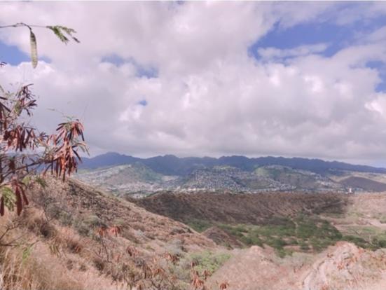 ハワイ女子旅特集 - 人気のカフェやグルメ、インスタ映えスポット、ディズニーなど旅する女子のおすすめまとめ_131