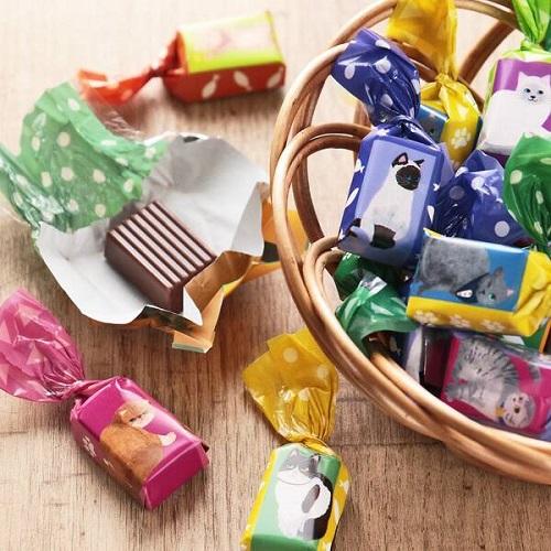カルディおすすめチョコ「オリジナル にゃんこミルクチョコレート」