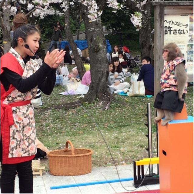 《公園はしご旅》in 福岡 今が見頃!とっておきの桜スポットをご紹介!!_5