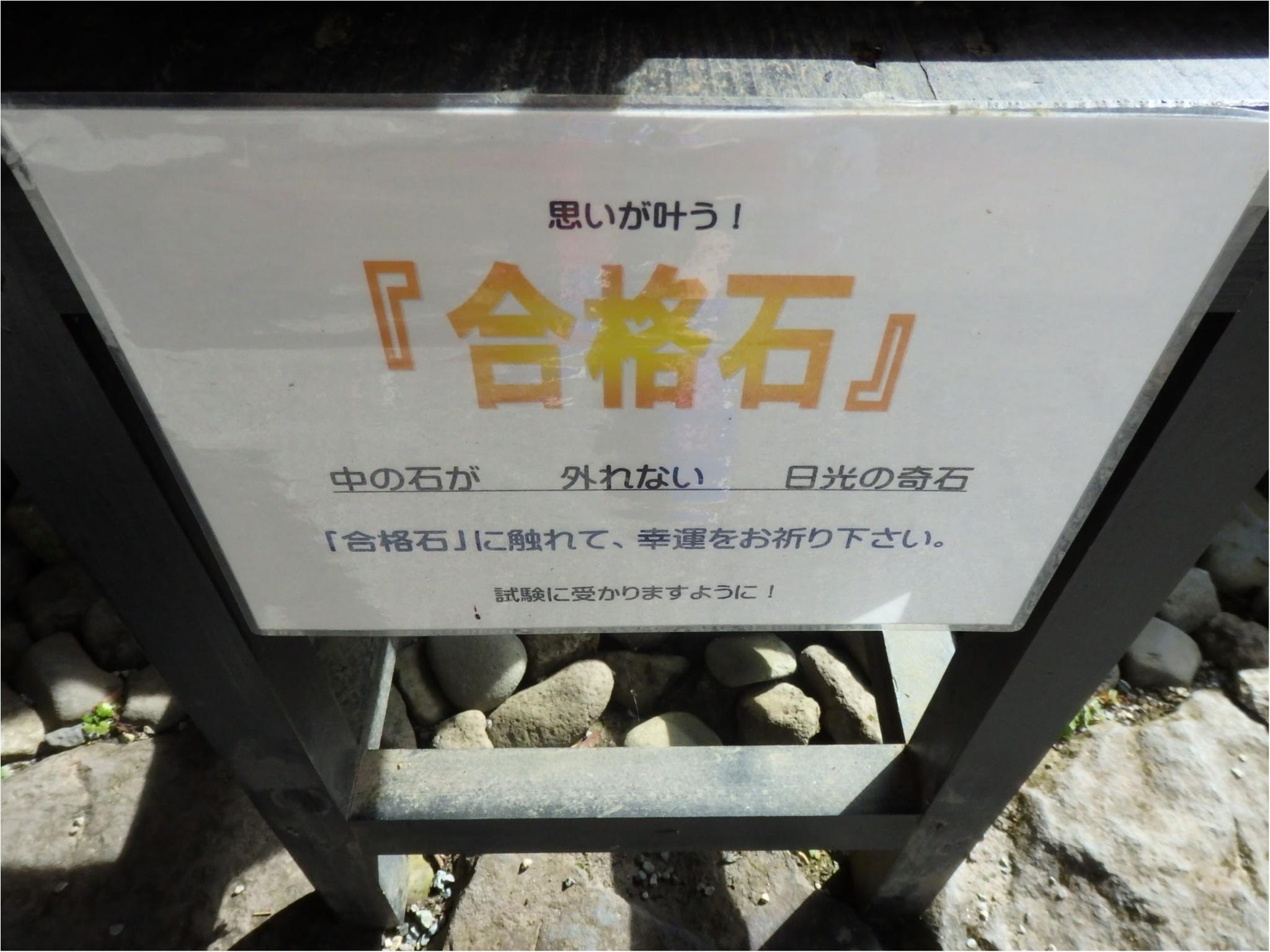 【知らなかった!】日本一楽しめる神社へ潜入してみた_24