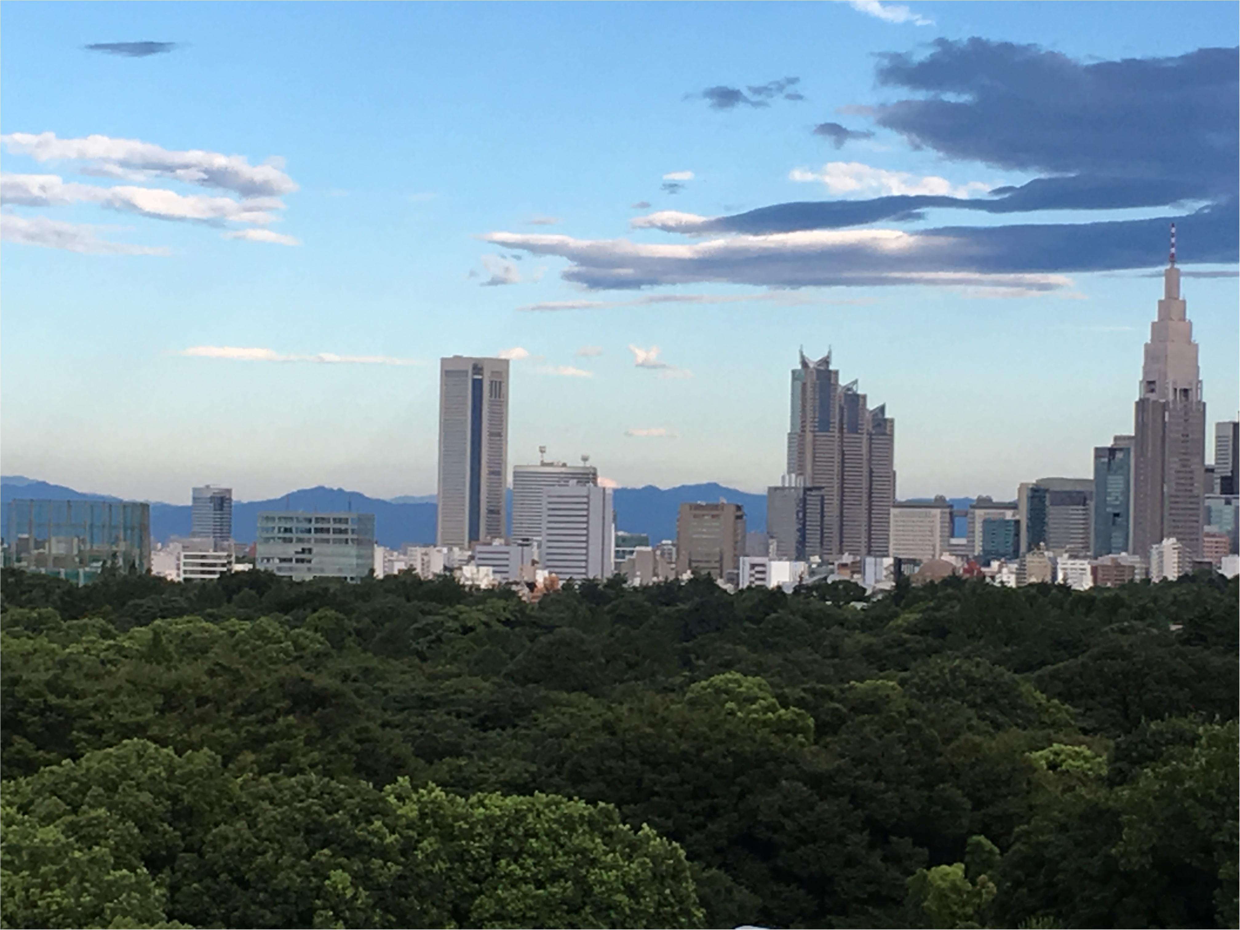 今が満開!!東京から1時間半で行けちゃう♪♪絶景のひまわり迷路へbyじゅな_2
