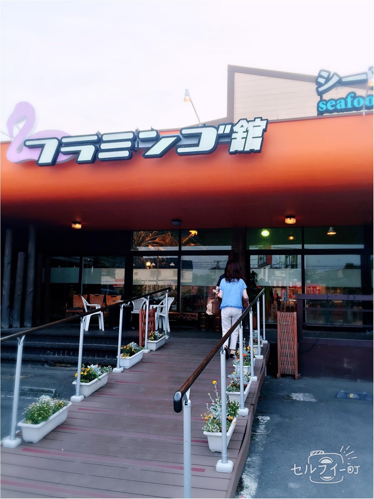 【福島の旅v1】驚愕‼︎フラミンゴが沢山いるカフェで蟹を食べるの巻。_1