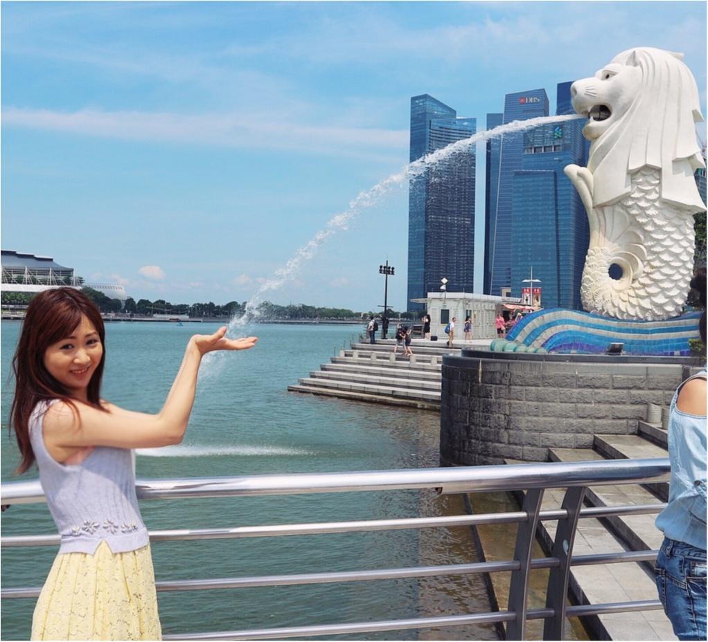 最高の女子旅ならここ。欲張り女子の望みを全部叶えてくれるシンガポール♡1度は見てみたい!絶景スポット編☻_2