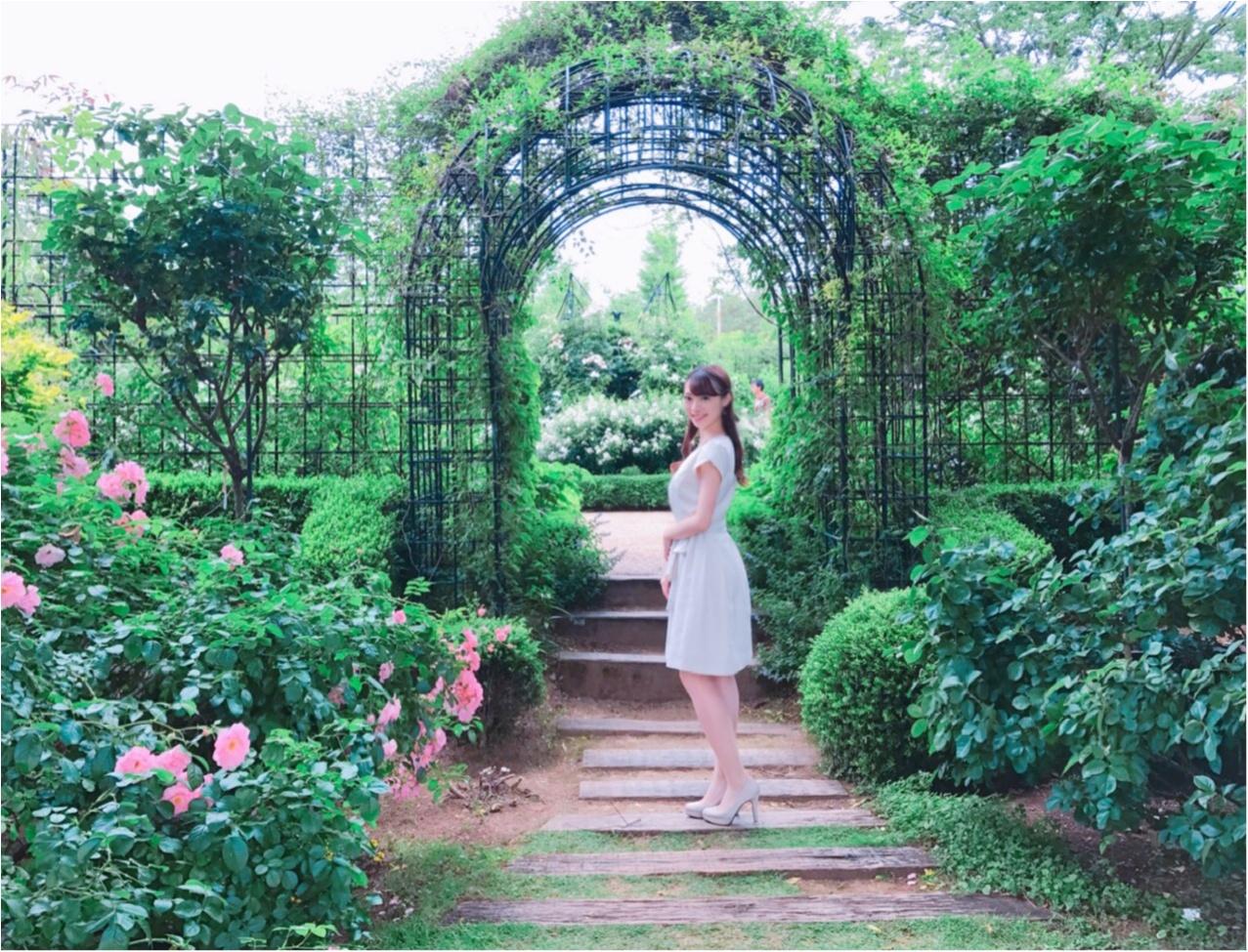 女の子の憧れ♡バラ園で素敵なひと時を、、(*^ω^*)_16