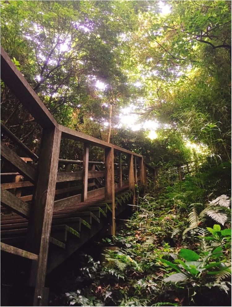 無人島【猿島】で日帰りBBQ♪♪フォトジェニックを楽しむ1日おすすめプラン☆_17