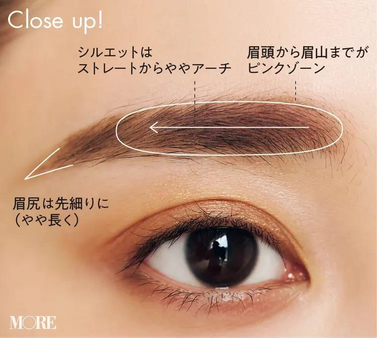 眉頭から眉山までがピンクゾーン、シルエットはストレートからややアーチ状に、眉尻は先細りに(やや長く)