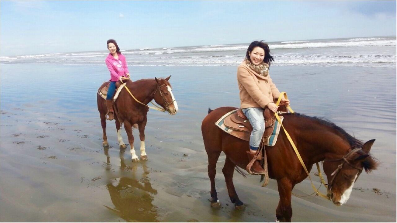 馬にアモーレ!!ステキな週末★都内で乗馬したことありますか?\(//∇//)\_2