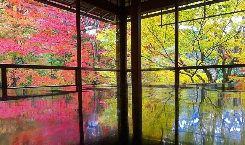 京都府・左京区の『瑠璃光院』
