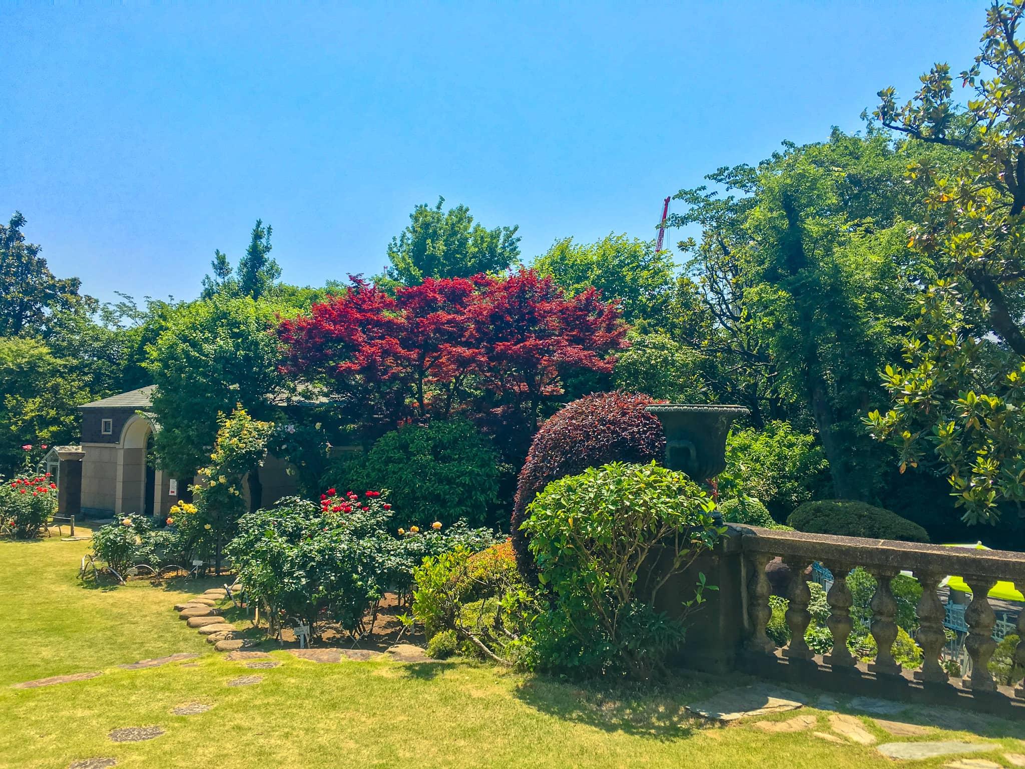 広大なお庭と綺麗な緑の画像