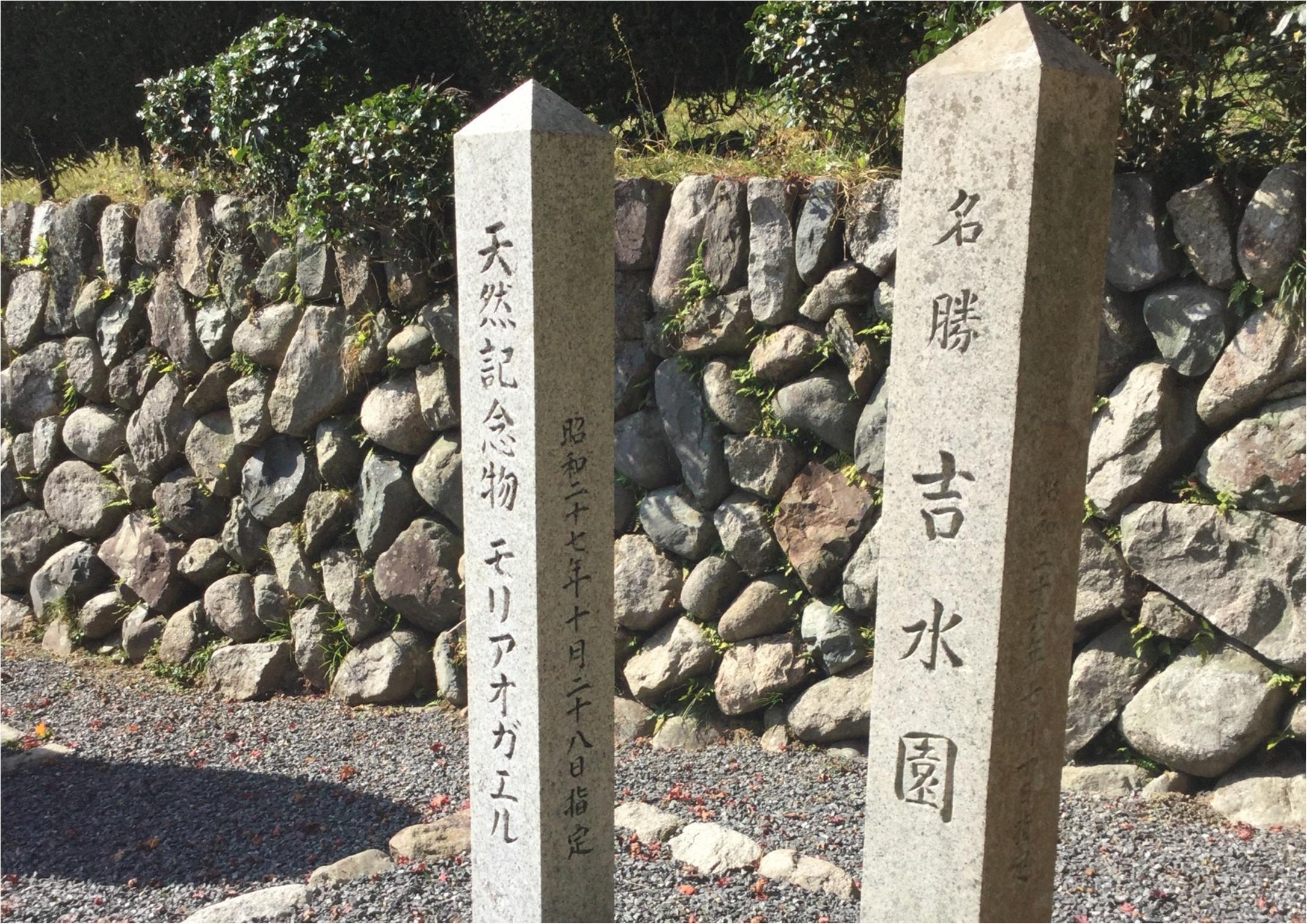 【#紅葉デート】春と秋に2週の週末しか一般公開されない!広島県を代表する紅葉スポット『吉水園』♡_5