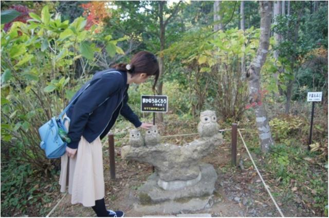 【パワースポット】栃木県の鷲子山神社へ運気アップに行ってきました♪《メディアで話題のフクロウ神社》_7_1