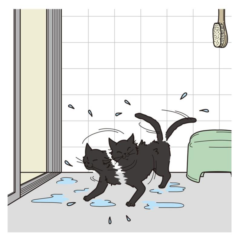 洗濯、シャワー、掃除機……カンタン節約術で、年間約15000円おトクに!? _2