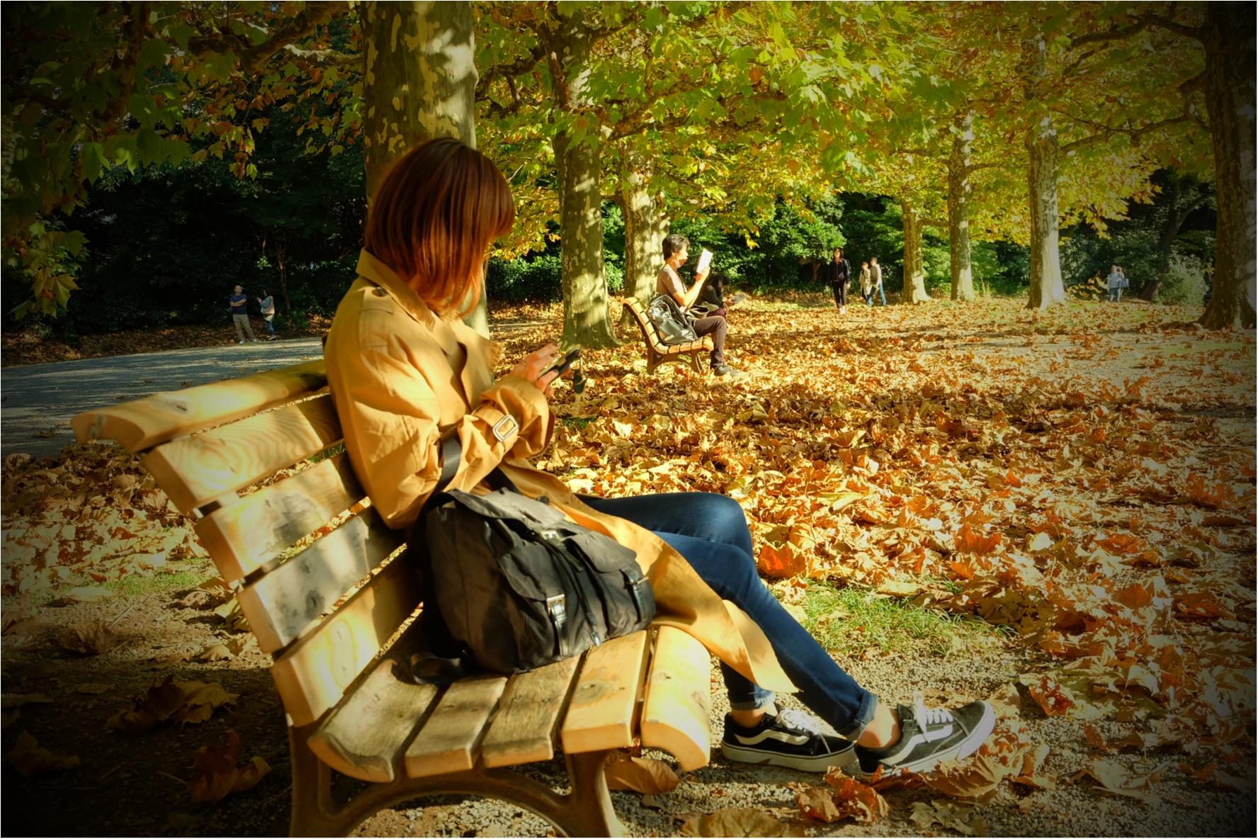 東京でも絶景の紅葉が!《新宿御苑》で秋が始められますよ〜!!フォトスポット&コーディネートも合わせてご紹介!_10