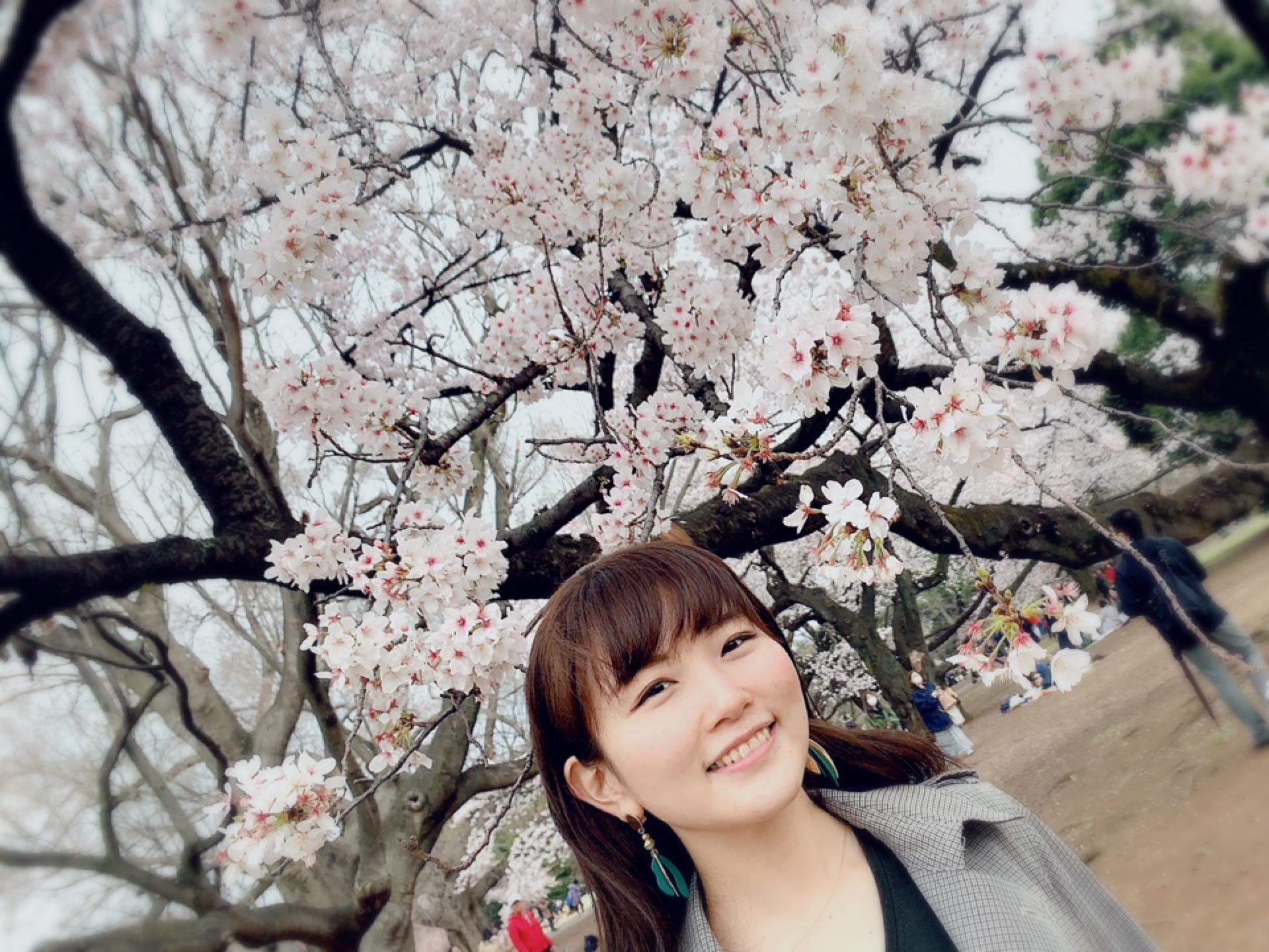 ▷桜の季節【お手軽お花見どこでする??】_4