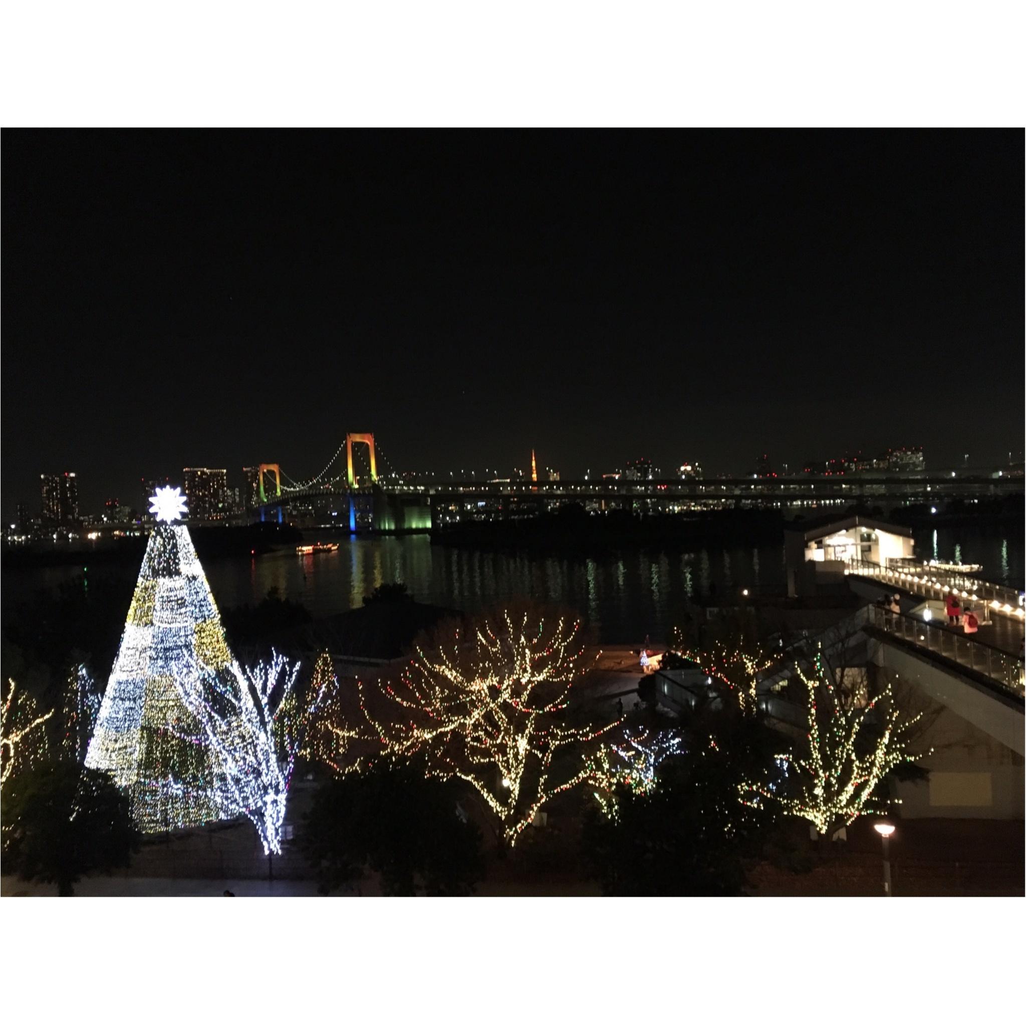 ※今週末まで※クリスマスデートにオススメ!!●●●で楽しむ最高にロマンチックな10のイルミネーション★_7