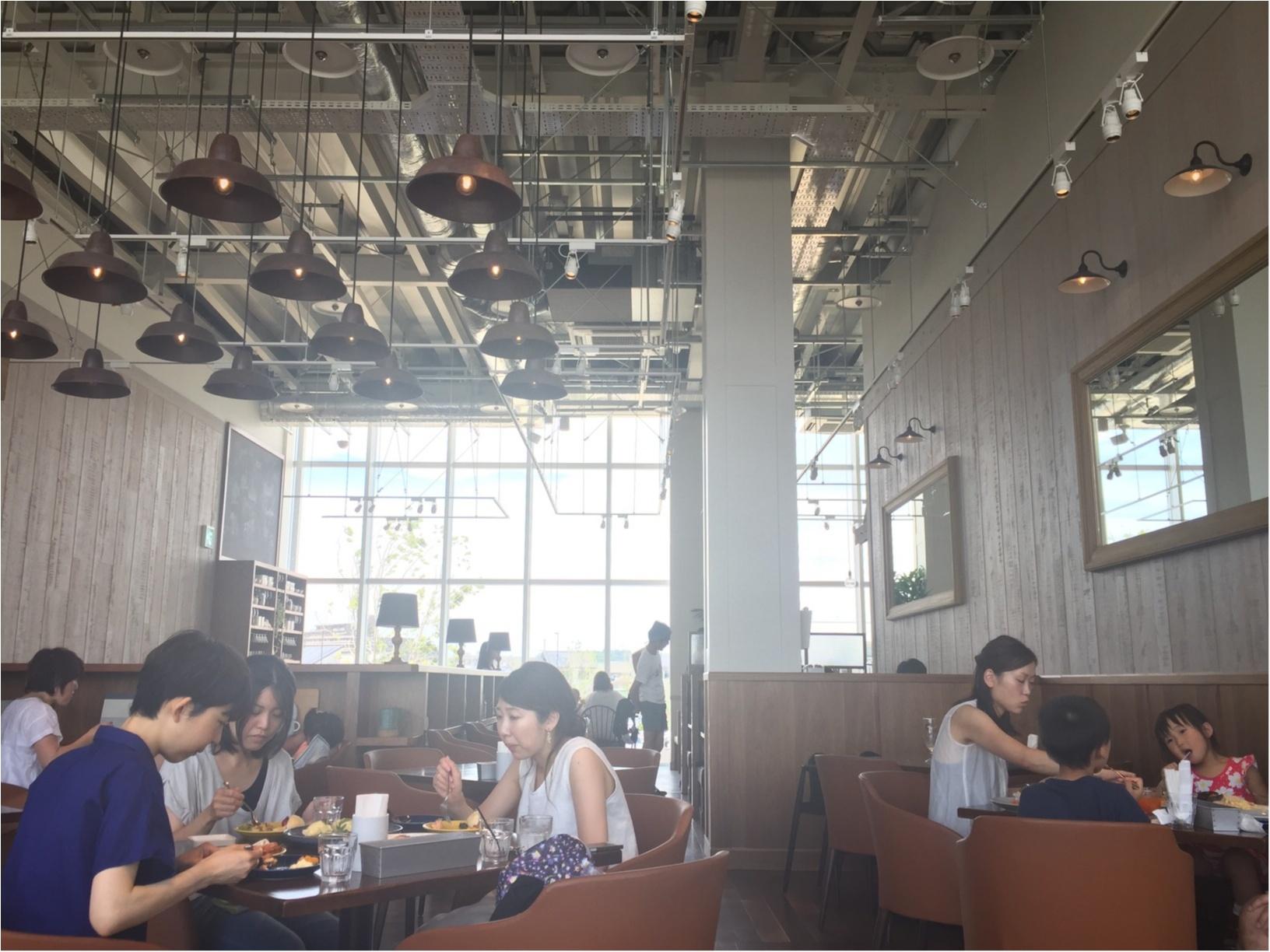 湘南のお洒落スポット『蔦屋書店』は、湘南らしいライフスタイルを提案する文化複合施設✨≪samenyan≫_10