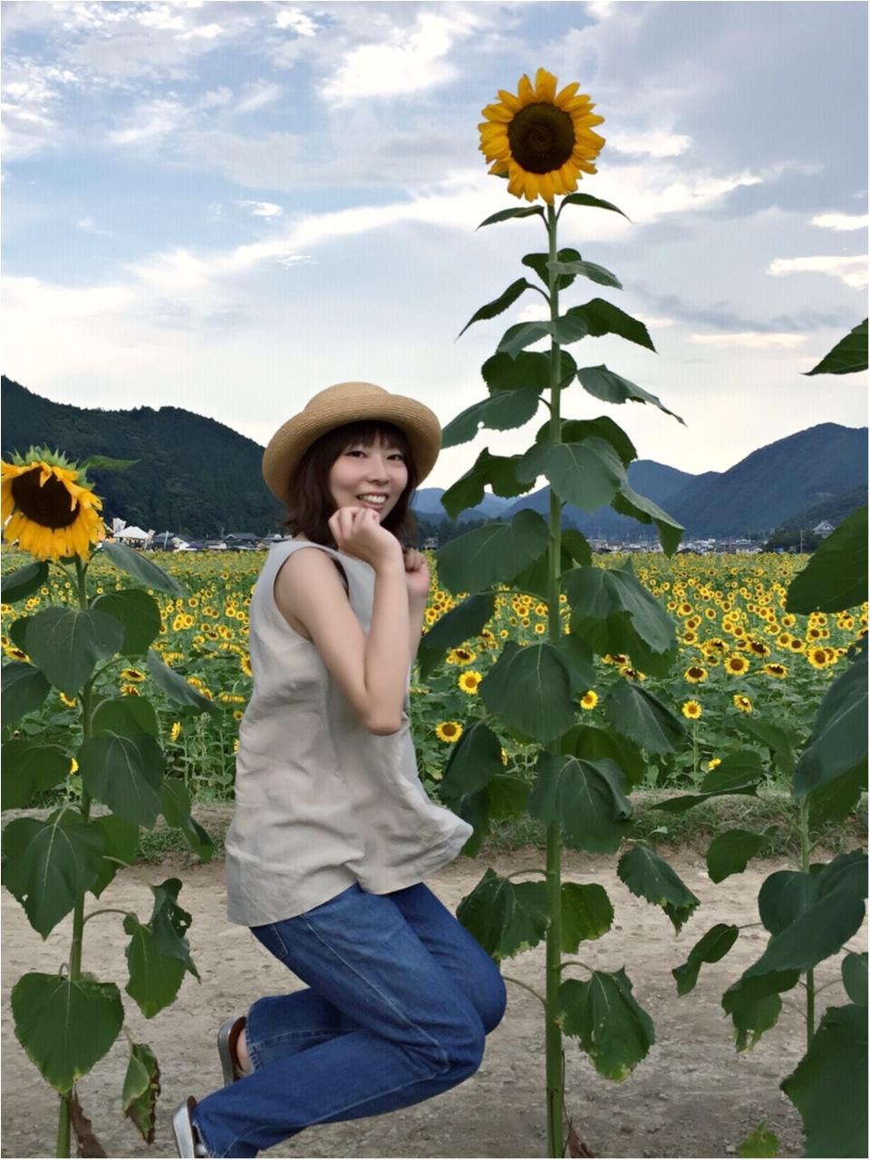 夏だ!8月だ!満開のひまわり畑へ!_7