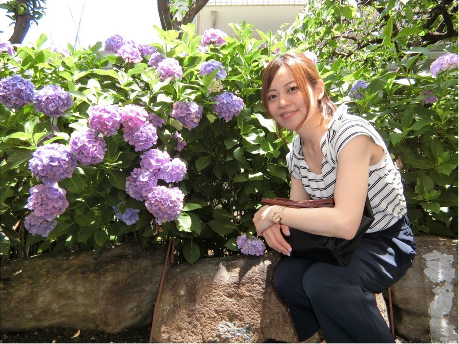 【今が見頃!】6月のおでかけは紫陽花まつりがおすすめ*写真映えするコーデのポイントも♡_7