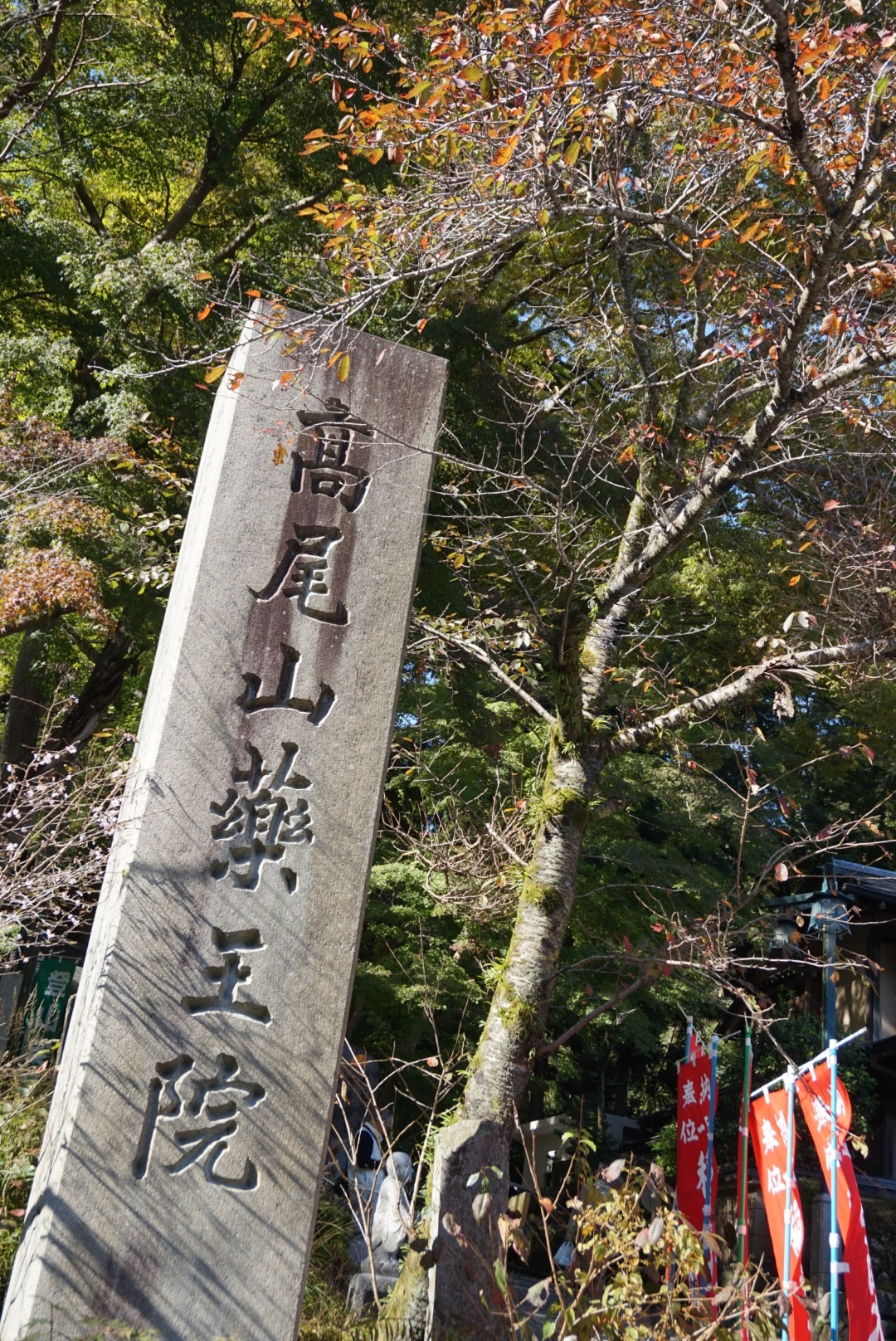 【おでかけ】いよいよ紅葉シーズン♡新宿から1時間以内の紅葉スポットって? _10