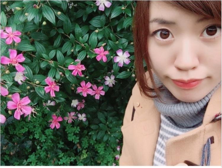 念願のモアハピ部!No.678さややです✴︎11期からよろしくお願いします♡_1