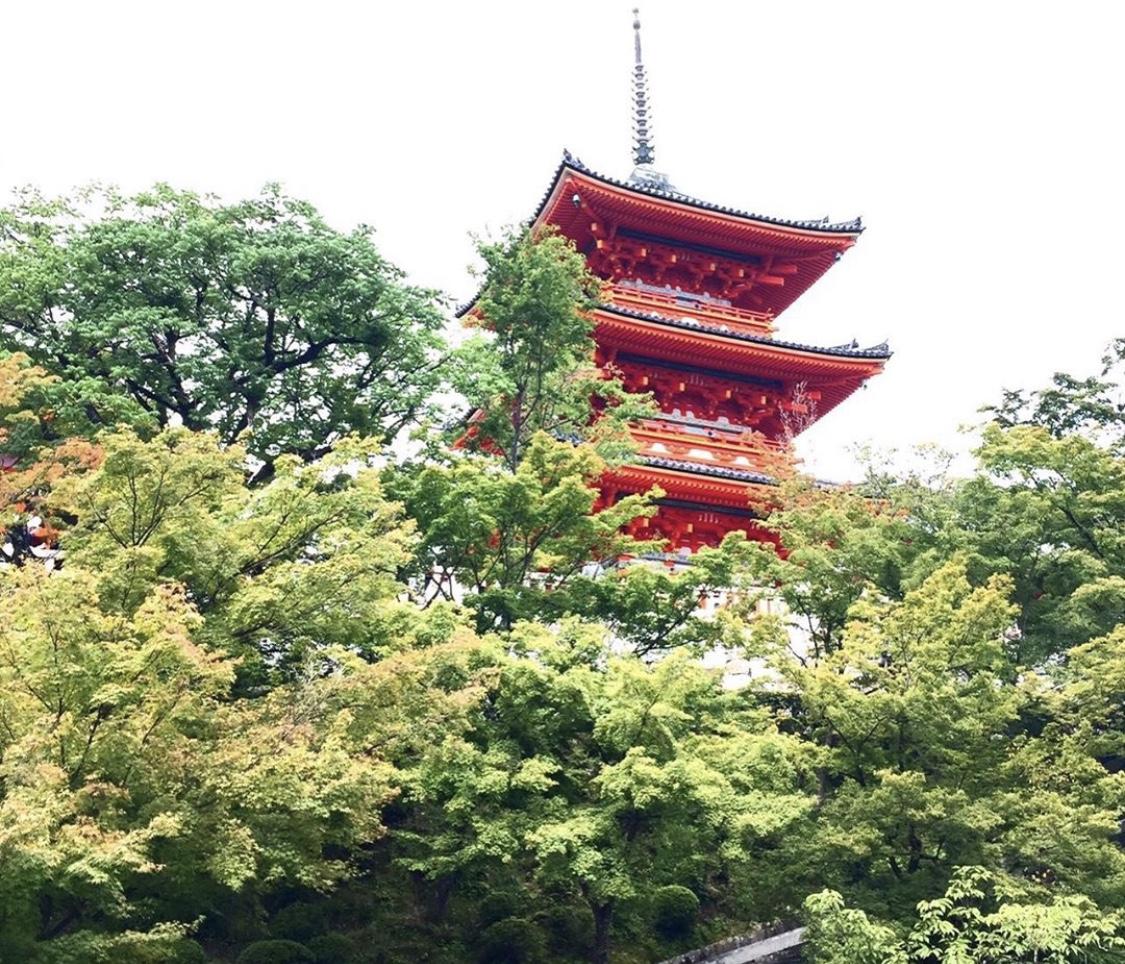【女子旅におすすめ】京都で憧れの町家一棟貸し!_1