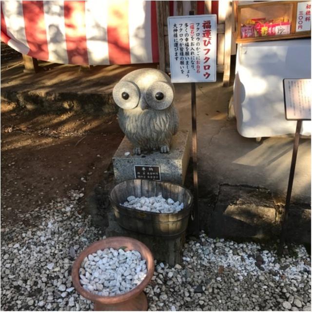 【パワースポット】栃木県の鷲子山神社へ運気アップに行ってきました♪《メディアで話題のフクロウ神社》_6